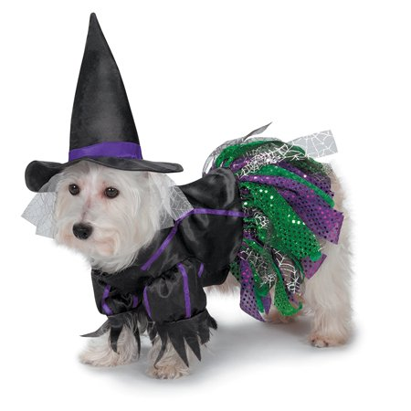 Large Zack & Zoey Scary Witch Costume for Dogs fits 20
