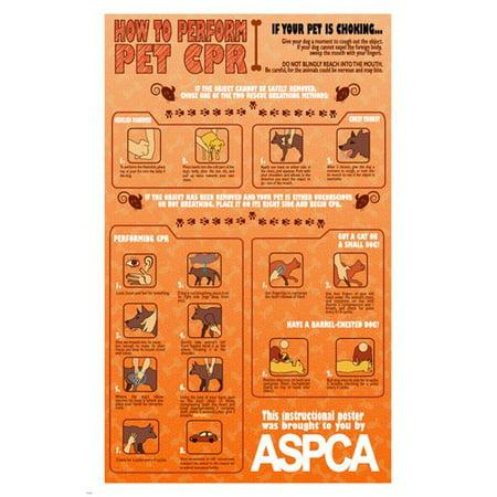 Pet Cpr Instructional Poster 24X36 Unique Educational Animal-Friendly