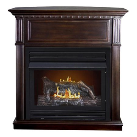 Vent Free Gas Fireplace - GFD2670 26K BTU Vent Free Gas Fireplace