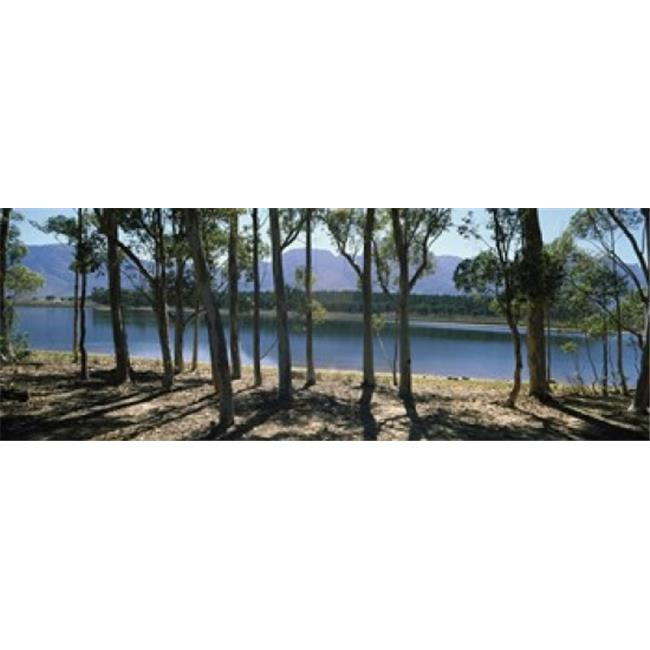 Panoramic Images PPI111601L A dam on a farm in Hermon  South Africa Poster Print by Panoramic Images - 36 x 12 - image 1 of 1