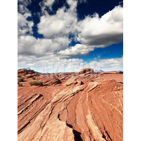 The Lake Powell in Glen Canyon Print Wall Art By
