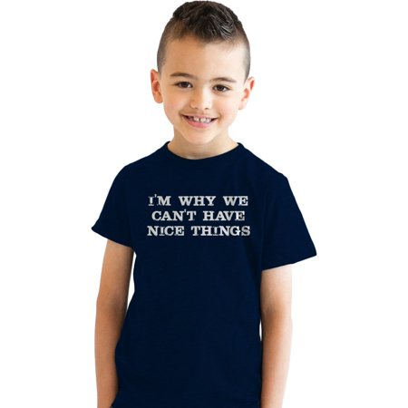 Crazy Dog T-shirts Youth I'm Why We Can't Have Nice Things T Shirt Funny Clumsy Tee for (Nice Youth T-shirt)