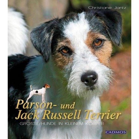 Parson Jack Russell Terrier - Parson- und Jack Russell Terrier - eBook