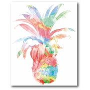 Courtside Market Rainbow Pineapple Gallery-Wrapped Canvas Wall Art, 16x20