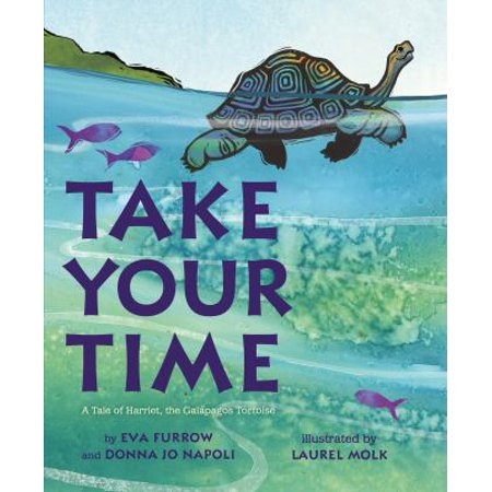 Take Your Time  A Tale Of Harriet  The Galapagos Tortoise