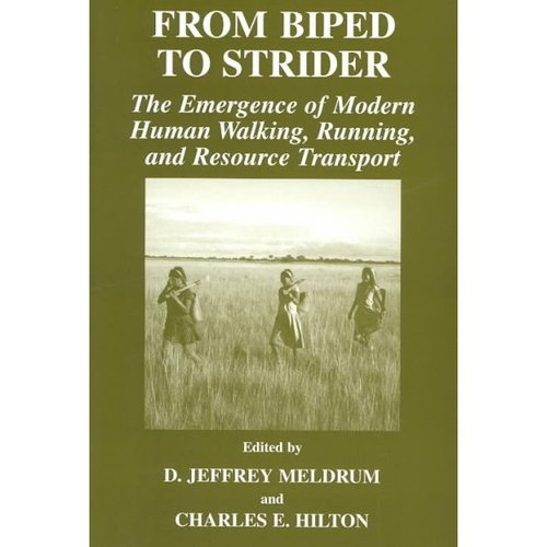 From Biped to Strider: The Emergence of Modern Human Walking, Running, and Resource Transport