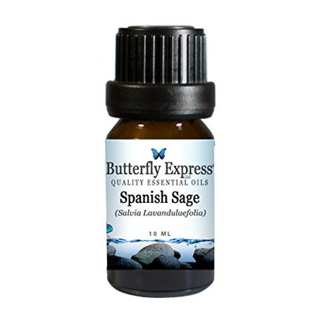 Spanish Sage (Butterfly Express Spanish Sage Essential Oil 10)