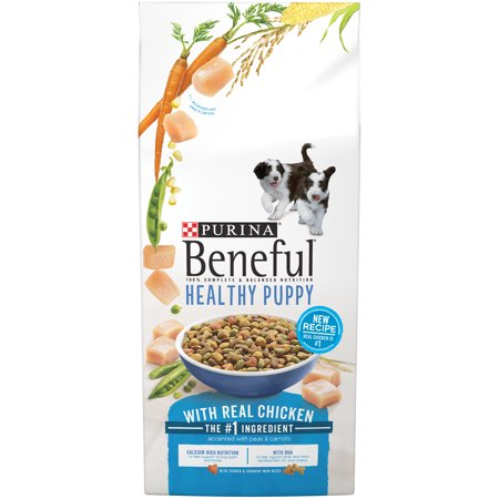 Purina Beneful Healthy Puppy Dry Dog Food 6.3 lb.