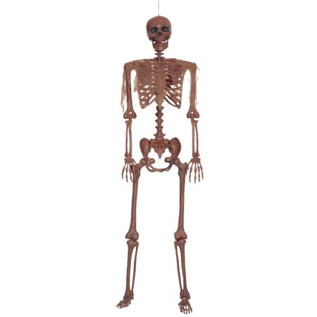Decayed Pose N Stay Skeleton Halloween Decoration - Letter N Halloween