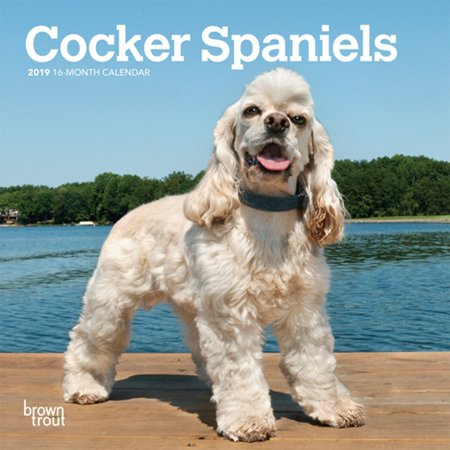 Cocker Spaniels 2010 Calendar (2019 Cocker Spaniel Mini Wall Calendar,  by BrownTrout )