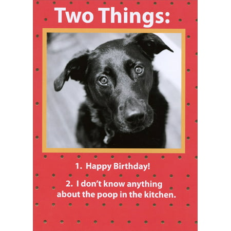 Recycled Paper Greetings Two Things Funny Birthday Card From The Dog](Halloween Greetings Funny)