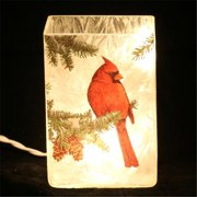 DecorFreak Lighted Square Glass Jar - With Red Bird