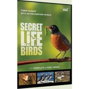 BBC Documentaries: Secret Life of Birds-5 Part Series (Other) by Digital1stop