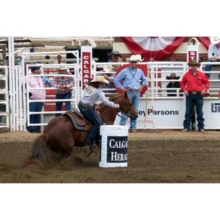 LAMINATED POSTER Rider Person Calfary Barrel Racing Horse Animal Poster Print 24 x