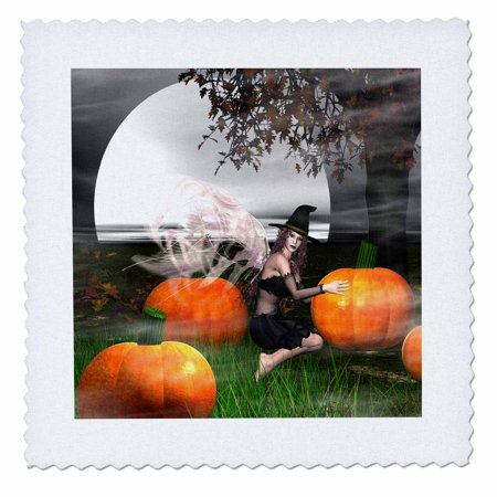 3dRose Happy Halloween Fairy Witch sitting - Quilt Square, 10 by 10-inch - Halloween Pops Quilt Kit