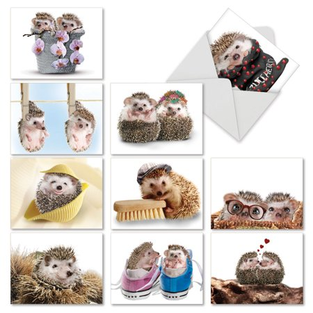 'M6541TYG CARDS FROM THE HEDGE' 10 Assorted Thank You Note Cards Featuring Sweet and Cuddly Hedgehogs in Unexpected Places with Envelopes by The Best Card