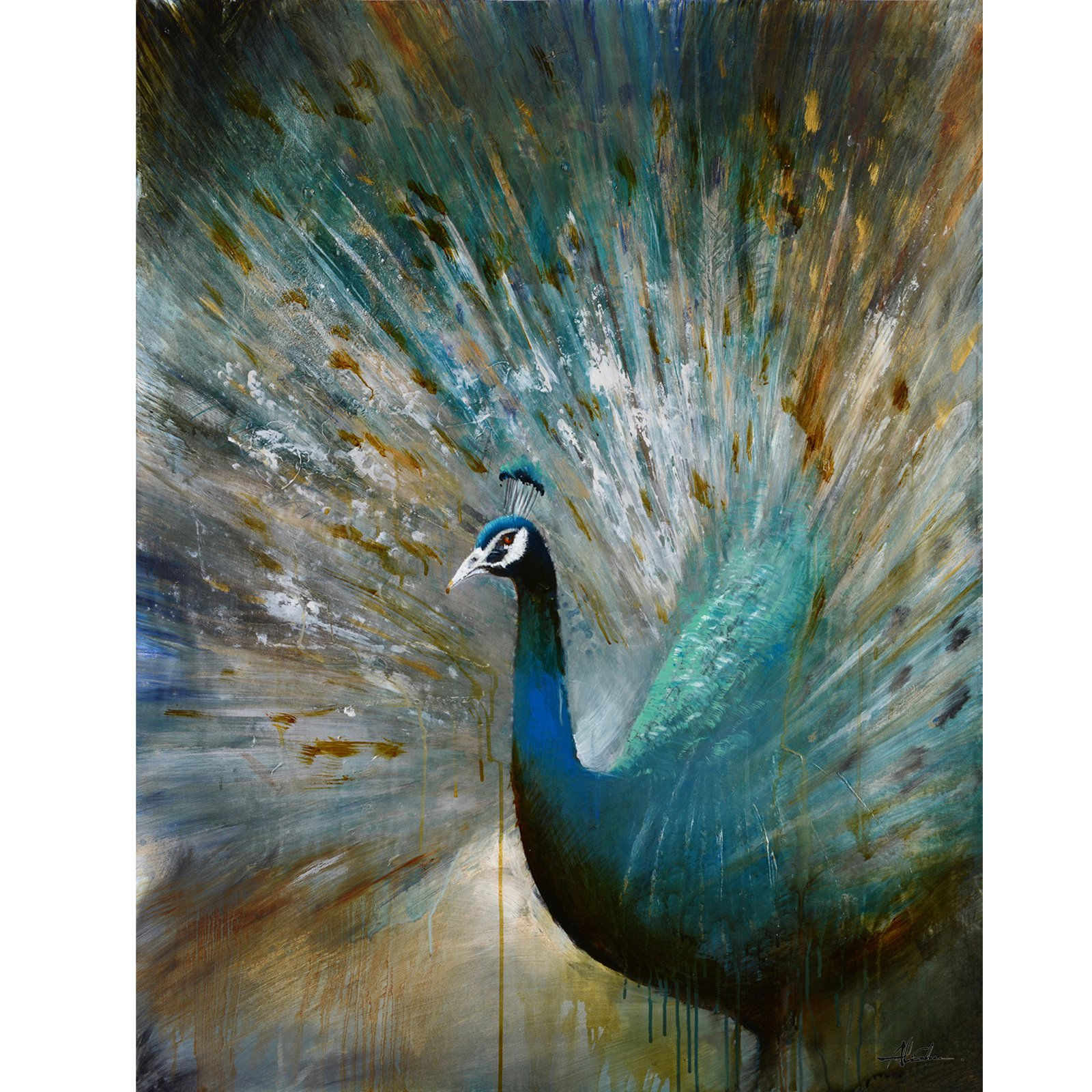 Yosemite Home Decor Peacock Prowess Wall Art - Walmart.com