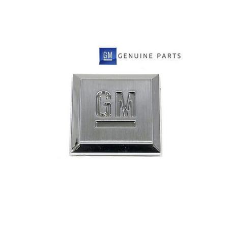 GM OEM Front Fender or Doors
