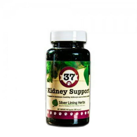 Silver Lining Herbs - Silver Lining Herbs k37c Kidney Support 37 Kidney Support