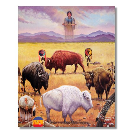 Native American Indian Buffalo with Dream Catcher Wall Picture 8x10 Art (Native American Indian Buffalo)