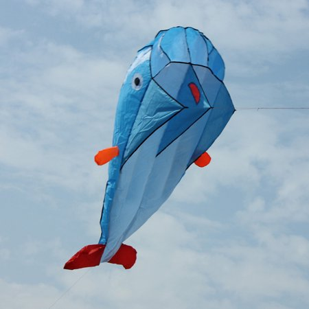AGPtek 3D Kite Huge Frameless Soft Parafoil Giant Dolphin (Got Kite)