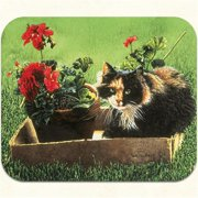 Fiddlers Elbow m319 Spunky Mouse Pad, Pack Of 2