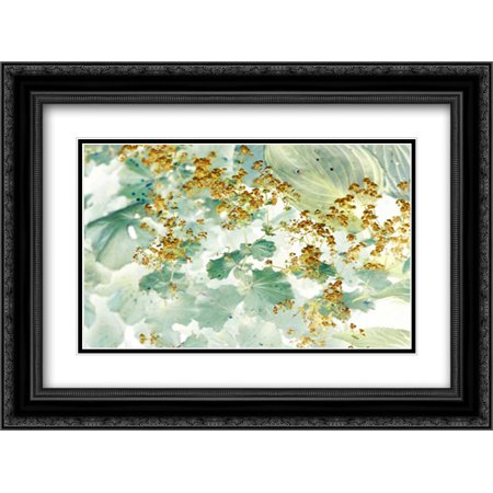 Golden Ladys Mantle 2x Matted 24x18 Black Ornate Framed Art Print by Stalus, (Ladies Matte)