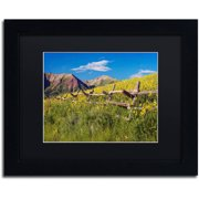 "Trademark Fine Art ""Wood Fence"" Canvas Art by Michael Blanchette Photography Black Matte, Black Frame"
