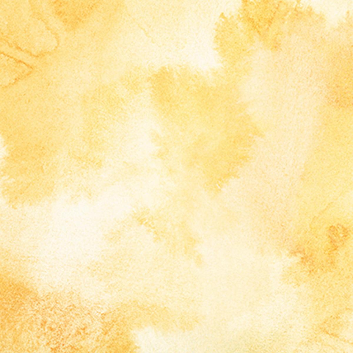 0e9079b1d021 Ella   Viv Single-Sided Backgrounds Cardstock 12