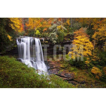 Dry Falls Autumn Waterfalls Highlands Nc Forest Fall Foliage Print Wall Art By daveallenphoto