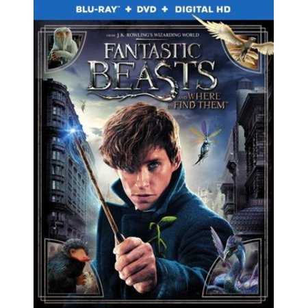 Fantastic Beasts And Where To Find Them  Blu Ray   Dvd