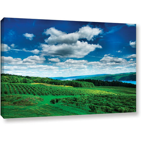 "ArtWall Steven Ainsworth ""Vineyard and Lake"" Gallery-Wrapped Canvas"