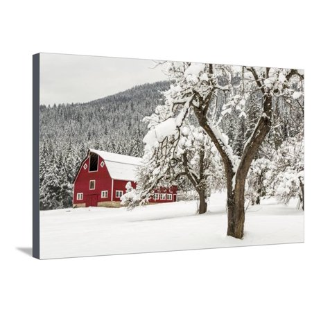 Fresh Snow on Red Barn Near Salmo, British Columbia, Canada Winter Scene Stretched Canvas Print Wall Art By Chuck Haney
