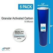 "Big Blue Granular Activated Carbon GAC Water Filter 20x4.5"" 10 Micron 6 Pack"