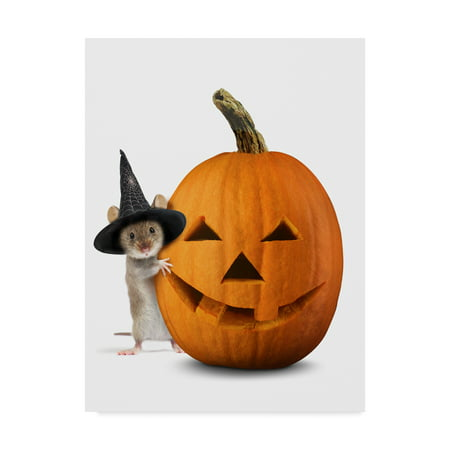 Trademark Fine Art 'Halloween Mouse' Canvas Art by J Hovenstine Studios (Words That Start With J For Halloween)