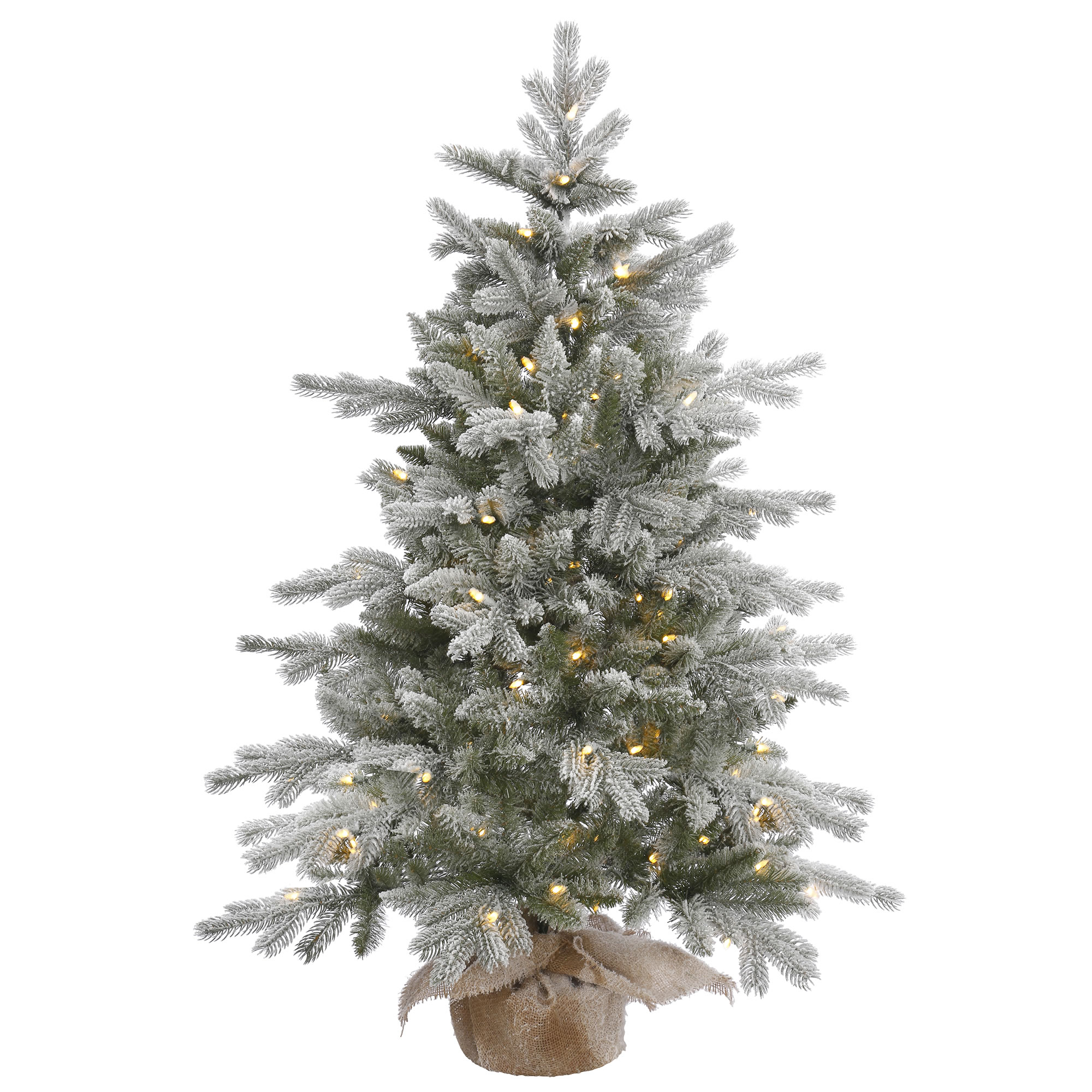 Vickerman Pre-Lit 4-Foot Frost Sable Pine Artificial Christmas Tree