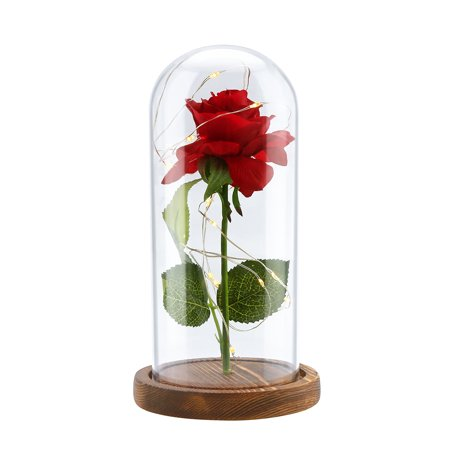 Beauty and the Beast Rose kit Led Light with Fallen Petals in Glass Dome on Wooden Base for Home Decor Holiday Party Wedding Anniversary