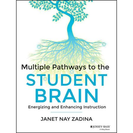 Multiple Pathways to the Student Brain: Energizing and Enhancing Instruction Deal