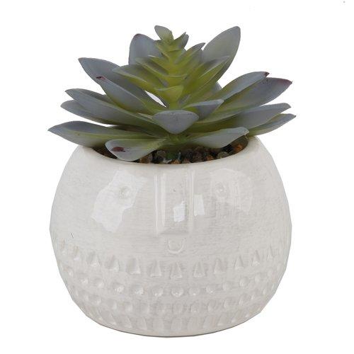 Bungalow Rose Round Ceramic Desktop Succulent Plant in Pot