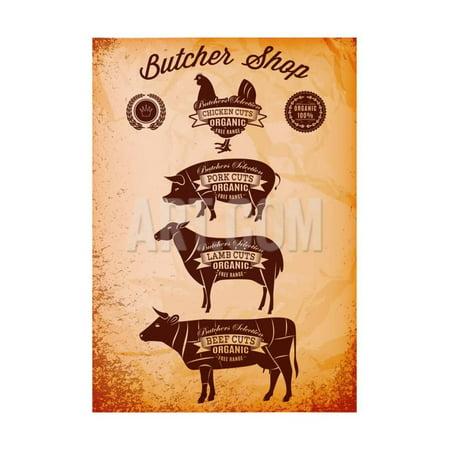 Vector Diagram Cut Carcasses Chicken, Pig, Cow, Lamb Print Wall Art By 111chemodan111 (Chicken Diagram)