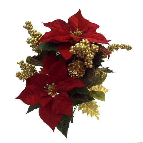 Better Homes and Gardens Poinsettia Bush, Red/Gold