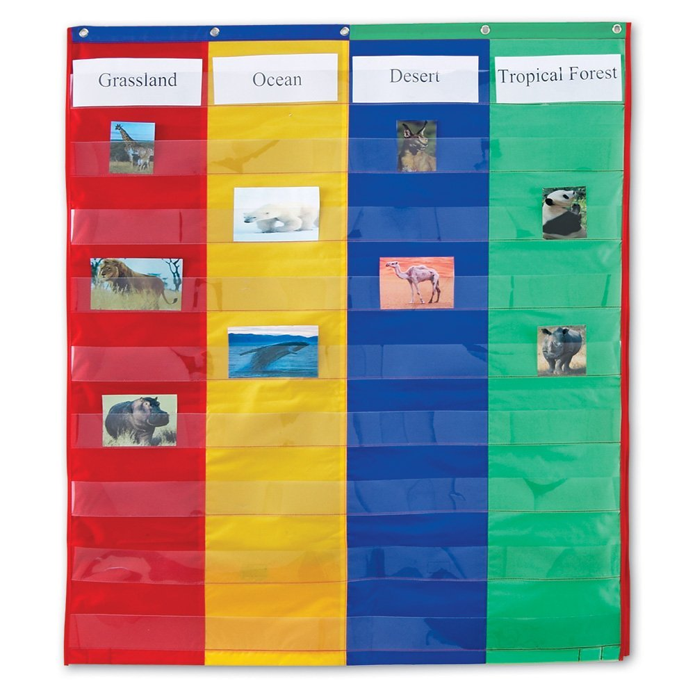 Learning Resources 2 And 4 Column Double Sided Pocket Chart
