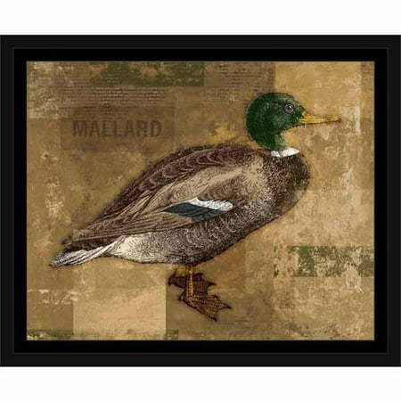 Textured Distressed Mallard Duck Lake Lodge Painting Green & Tan, Framed Canvas Art by Pied Piper Creative