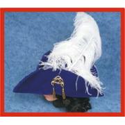 Dlx. Swashbuckler Hat