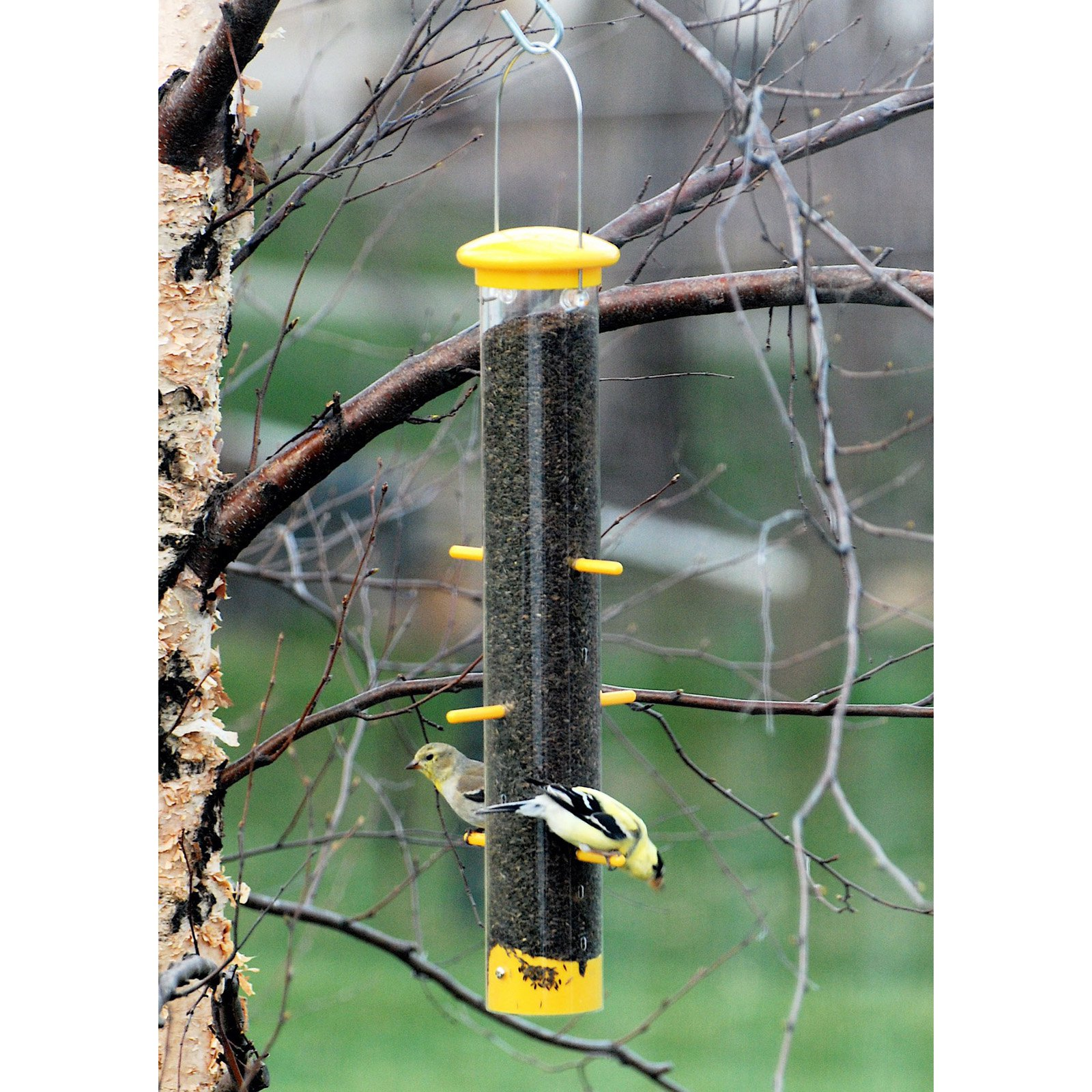 Wood Link Tails Up Finch Feeder