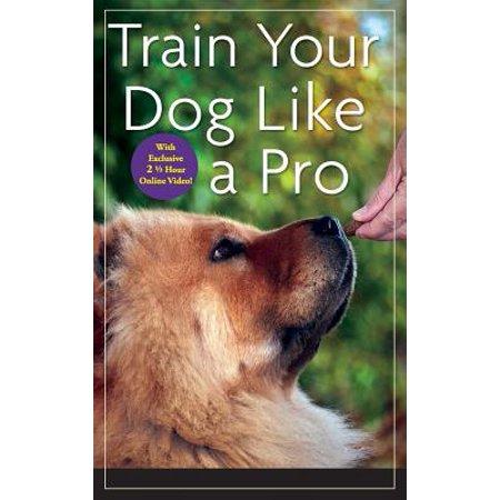 Train Your Dog Like a Pro (Like A Dog Returns To Its Vomit)