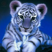 Luxtrada 5D Diamond Painting Kits Cross-Stitching Embroidery Landscape Animal Art Crafts Home Decor 11.81''*11.81''(style tiger)