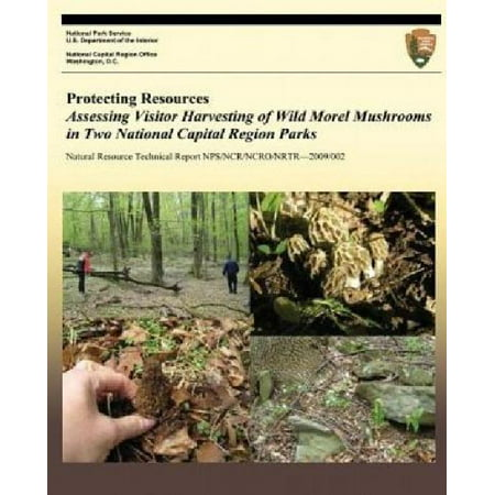 Protecting Resources  Assessing Visitor Harvesting Of Wild Morel Mushrooms In Two National Capital Region Parks