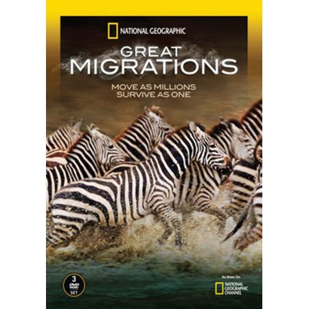 Halloween History National Geographic Channel (National Geographic: Great Migrations)