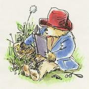 Paddington Bear Reading in the Grass Art Print on Premium Canvas